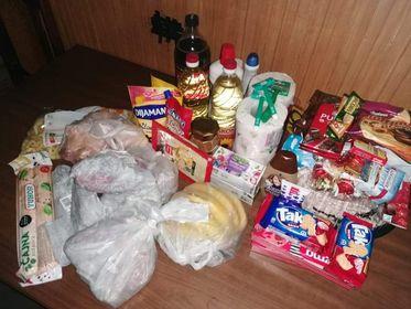 Groceries for the Martinović family 1