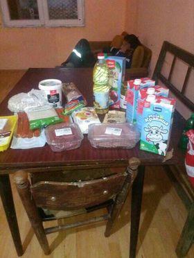Groceries for the Radenković family 1